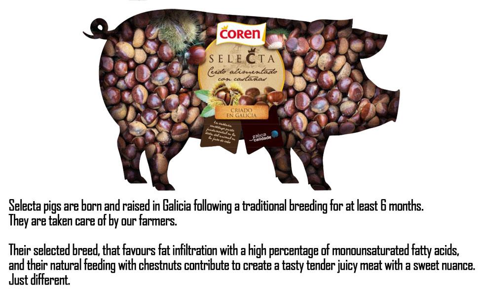 cpshopz chestnut pork shabu
